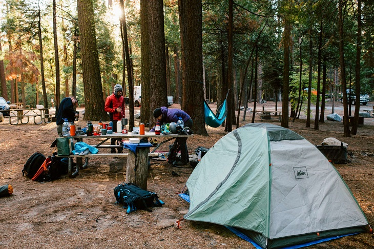 yosemite camping reviews
